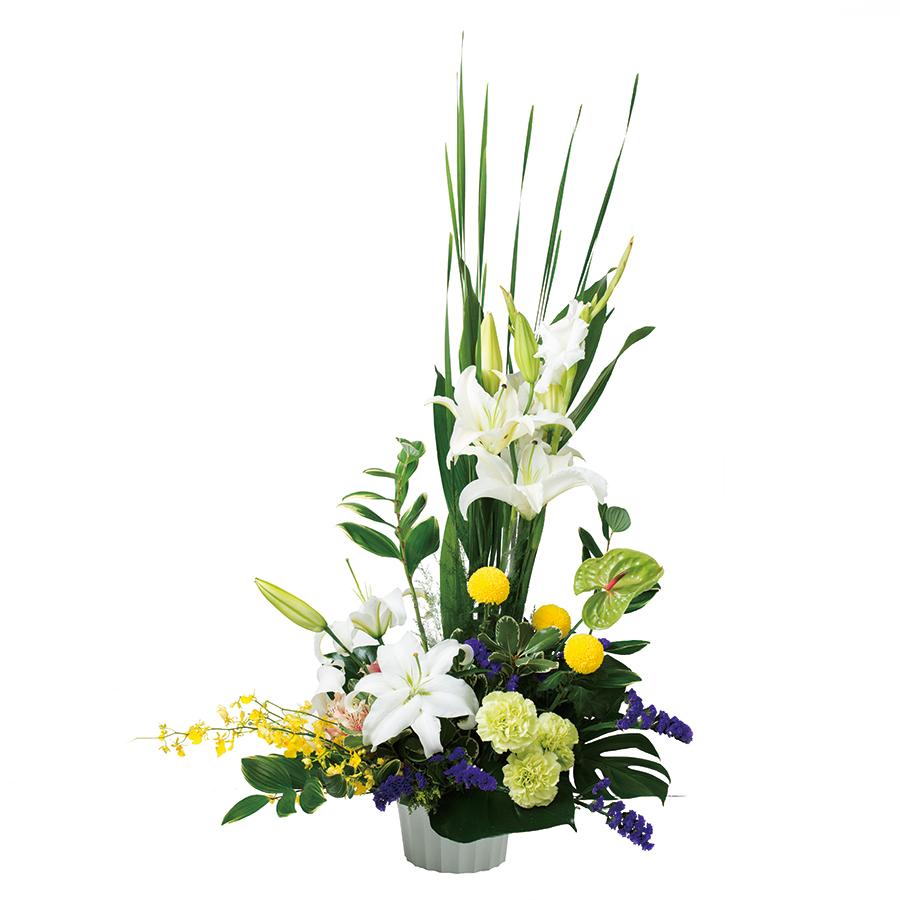 盆華(供花)